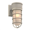 PLC 1 Light Outdoor Fixture Cage Collection , Silver