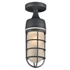 PLC 1 Light Outdoor Fixture Cage Collection , Bronze