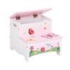 Butterfly Buddies Storage Step-Up