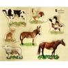 Edushape Large Knob Puzzle - Farm Animal
